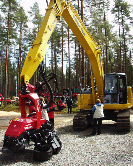 Order Russian Forestry 16