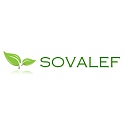 Forest Managers - Forest Harvesters - Loggers Trading Company, Importer, Exporter Companies  - SARL SOVALEF
