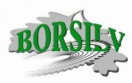 Research & Development Laboratories Companies  - SC BORSILV SRL