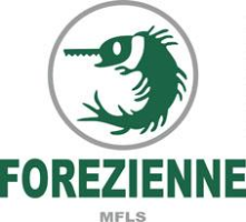 Wood Companies From France  - FOREZIENNE MFLS