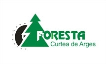 Wooden House Framing, Structure Manufacturers - SC FORESTA ARGES SA