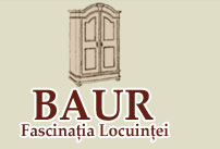 Living Room Furniture Other Certification Companies Romania  - SC FASCINATIA LOCUINTEI SRL