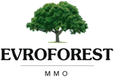 Wood Companies from Bulgaria - EVROFOREST MMO OOD