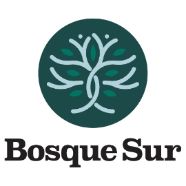 Manufacture Of Other Products Of Wood - Bosque Sur Srl