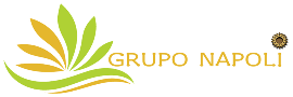 Surface Treatment And Finishing Products Trading Company, Importer, Exporter Companies  - GRUPO NAPOLI