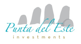 Marketing - Market Analysis - Studies Companies  - PUNTA DEL ESTE INVESTMENTS