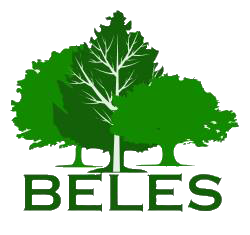 Wood Companies From Slovenia  - BELES d.o.o.