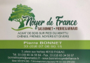 Lumber Wholesale - Sarl Bonnet - Noyer de France
