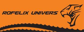 Used Woodworking Machinery Dealers - Second-hand Machines Companies  - SC ROFELIX UNIVERS SRL