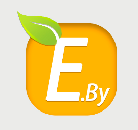 Energy Production From Wood Or Bio-fuels - «Energy By» LLC