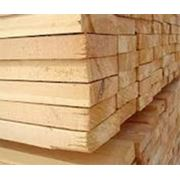 Wood Companies From Uzbekistan  - Buildintex