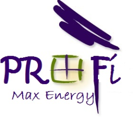 Wood Companies from Romania - PROFI MAX ENERGY SRL