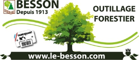 Quality Inspection - Timber Grading Other Certification Companies  - BESSON