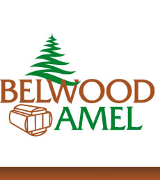 Shipping, Haulage, Etc. - BELWOOD AMEL AG
