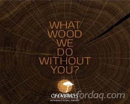 chabros international group a world of wood Chabros international group: a world of wood case solution opportunities: due to the higher sales and customer preferences, company enjoys the competitive advantage of existing in eight mena countries.